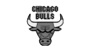 Chicago Bulls Success Story