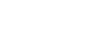 Insights 2020 Logo